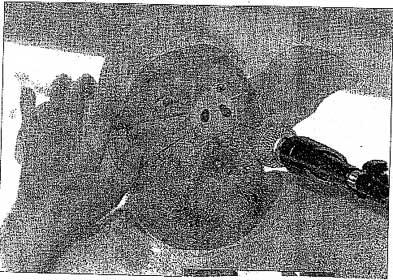Údajná karikatura proroka v západním tisku