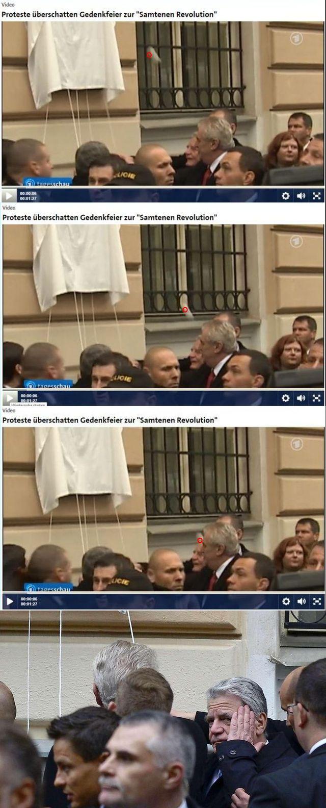 Albertov 17.11.2014, vejce trefilo německého przidenta Gaucka